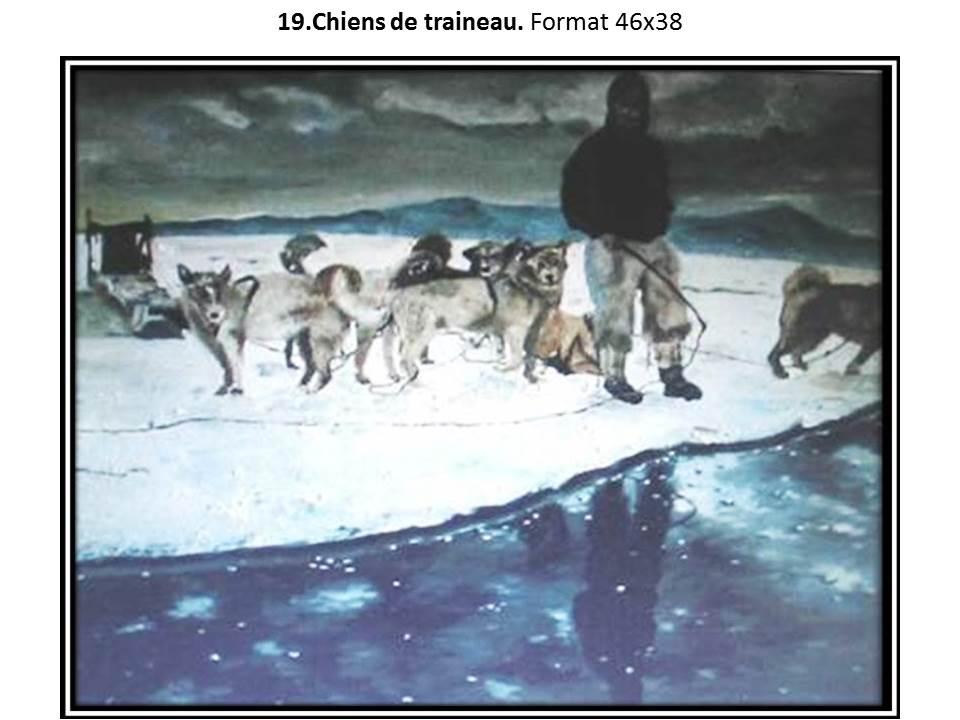19 chiens de traineau 1