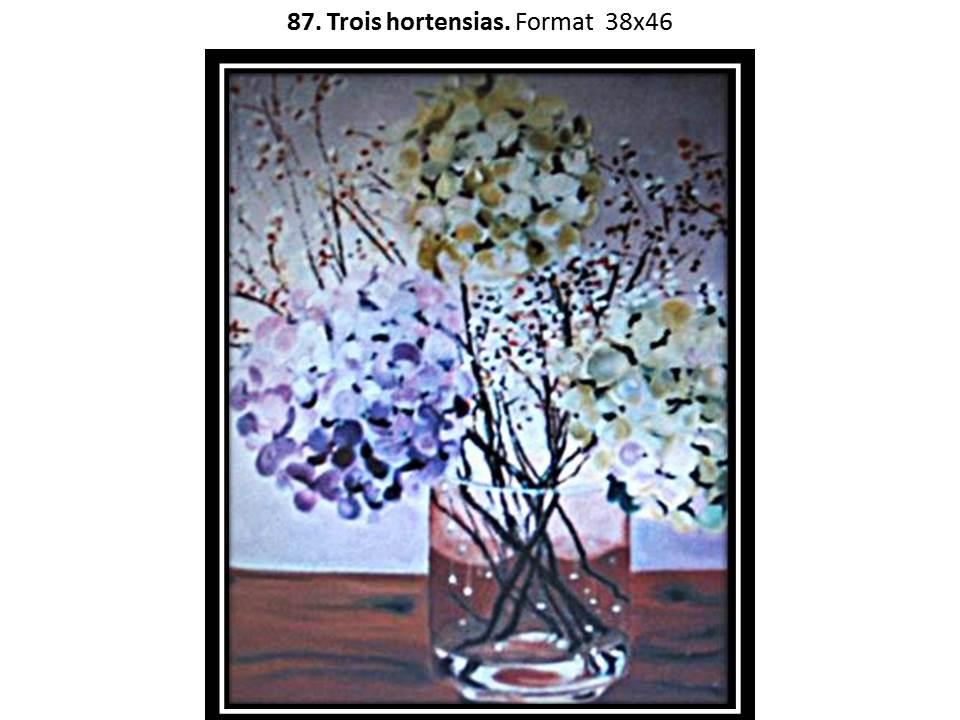 87 trois hortensias