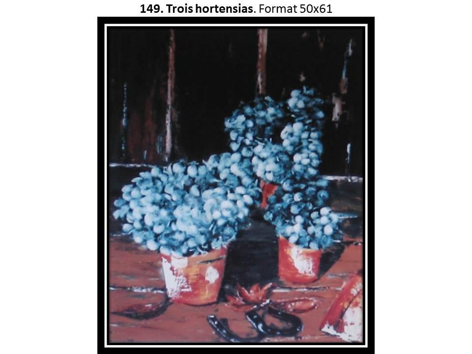 149 trois hortensias