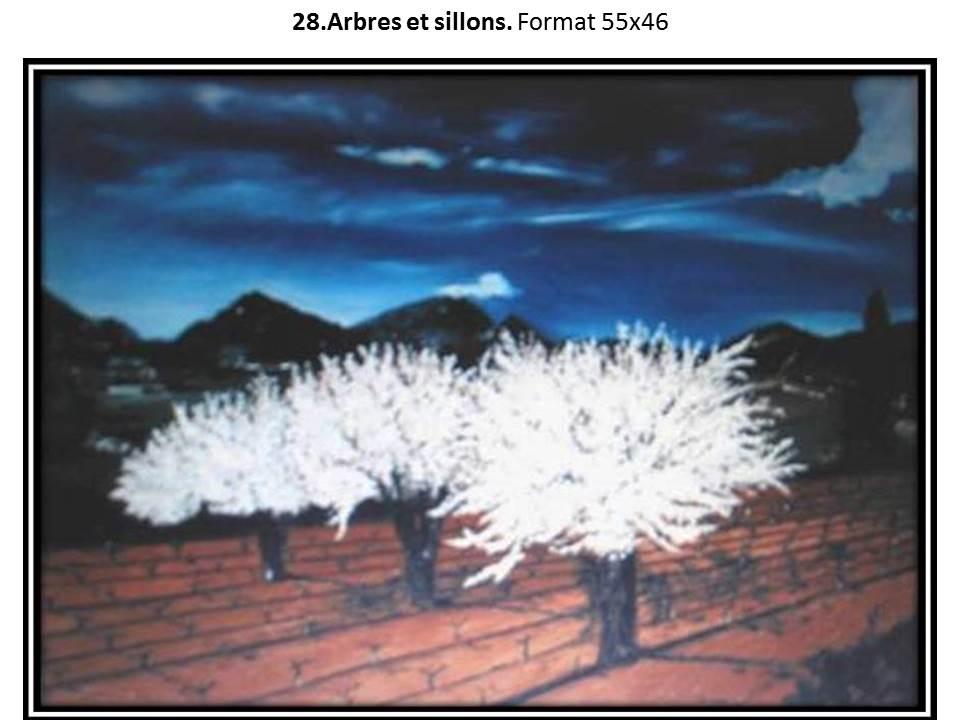 28 arbres et sillons 1